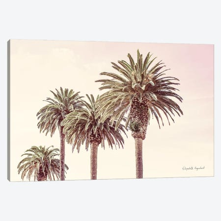 Pastel Palms Canvas Print #EUR45} by Elizabeth Urquhart Canvas Print