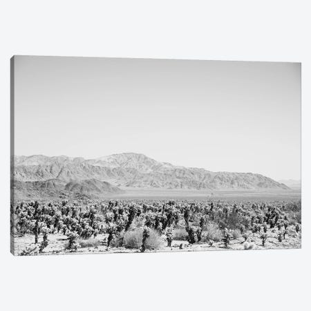 Road Trip IV Canvas Print #EUR8} by Elizabeth Urquhart Art Print