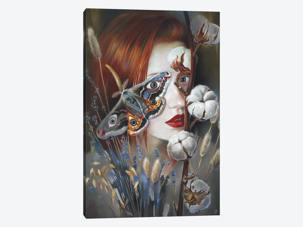 Moth by Eugenia Shchukina 1-piece Canvas Artwork