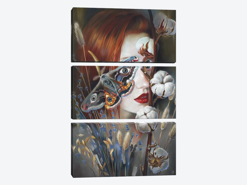 Moth by Eugenia Shchukina 3-piece Canvas Art