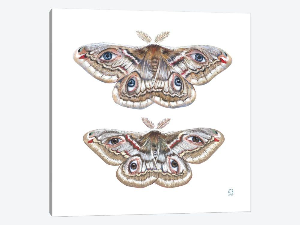 Two Moth by Eugenia Shchukina 1-piece Canvas Art Print