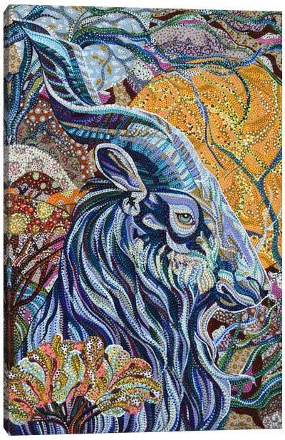 Full Moon Canvas Art Print