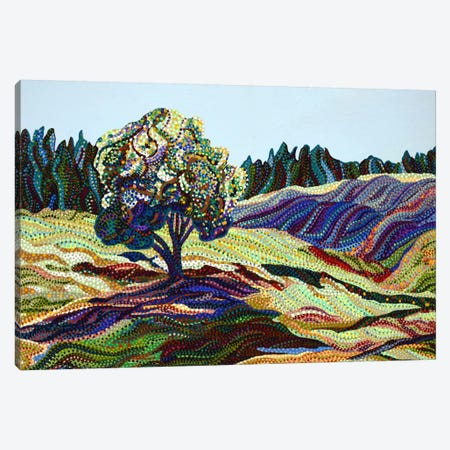 Greengrass Canvas Print #EVA15} by Ebova Canvas Art Print