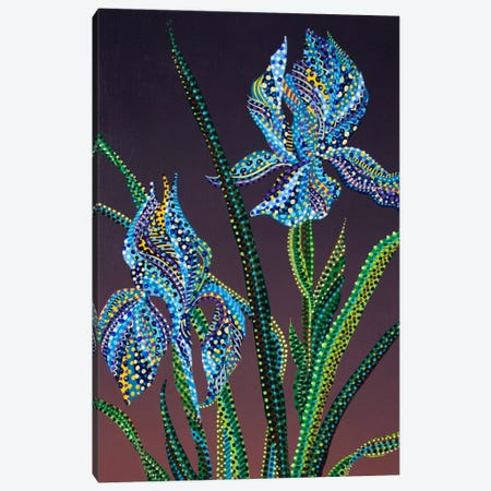 Irises Canvas Print #EVA18} by Ebova Canvas Wall Art