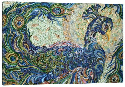 Peacock #2 Canvas Art Print