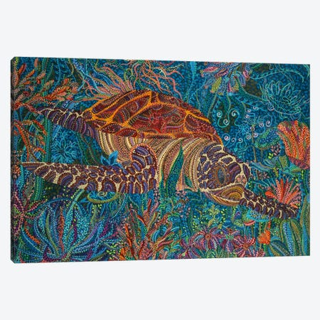 Turtle Canvas Print #EVA38} by Ebova Canvas Art