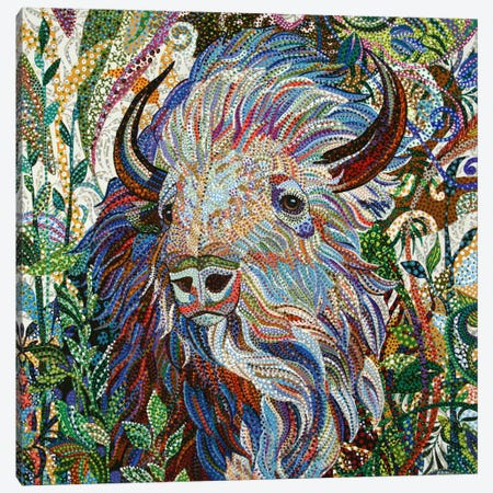 White Buffalo Canvas Print #EVA40} by Ebova Canvas Print