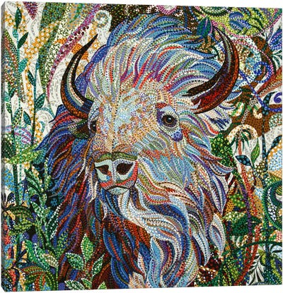 White Buffalo Canvas Art Print