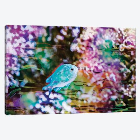 Vibrant Reef I Canvas Print #EVB19} by Eva Bane Art Print