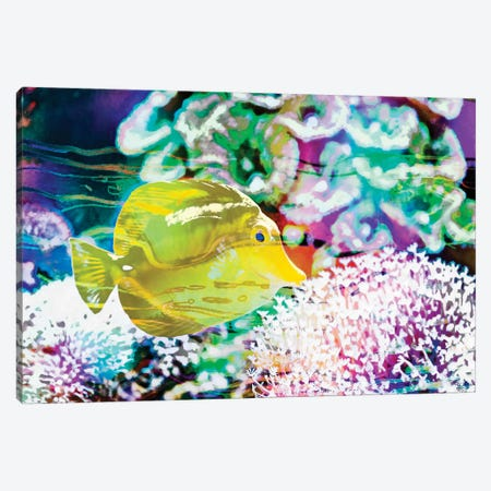 Vibrant Reef II Canvas Print #EVB20} by Eva Bane Canvas Wall Art