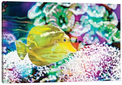 Vibrant Reef II Canvas Art Print