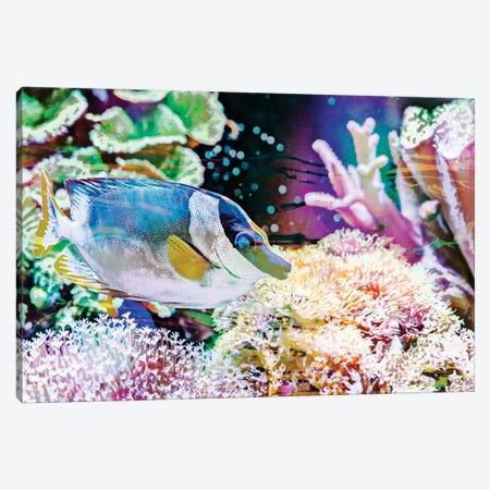 Vibrant Reef III Canvas Print #EVB21} by Eva Bane Canvas Wall Art