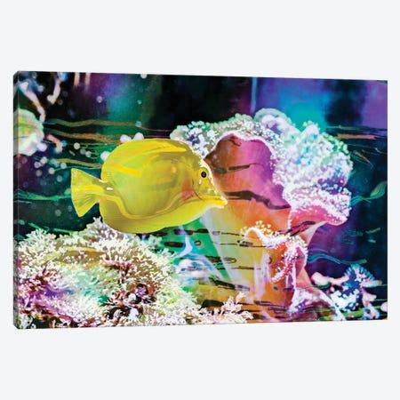 Vibrant Reef IV Canvas Print #EVB22} by Eva Bane Canvas Wall Art