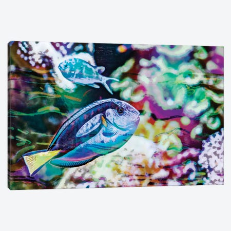 Vibrant Reef V Canvas Print #EVB23} by Eva Bane Canvas Wall Art
