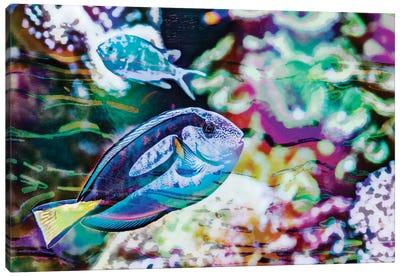 Vibrant Reef V Canvas Art Print