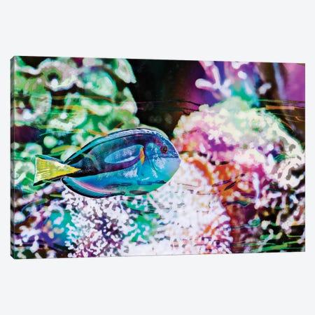 Vibrant Reef VI Canvas Print #EVB24} by Eva Bane Canvas Print