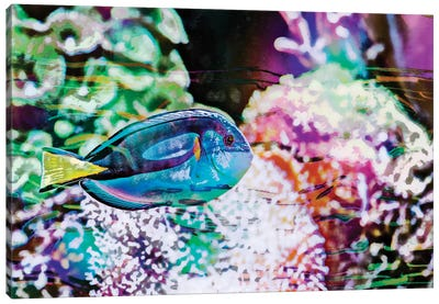 Vibrant Reef VI Canvas Art Print