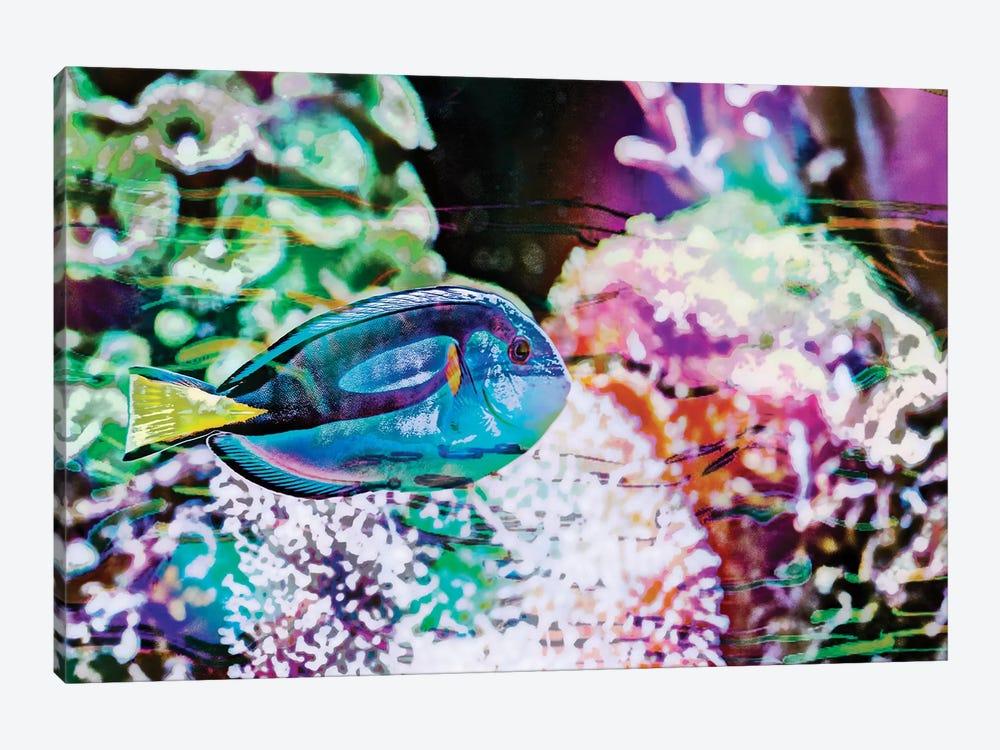 Vibrant Reef VI by Eva Bane 1-piece Canvas Art Print