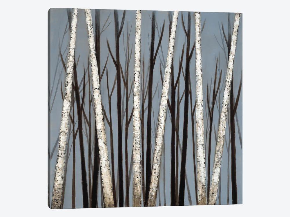 Birch Shadows by Eve 1-piece Canvas Art