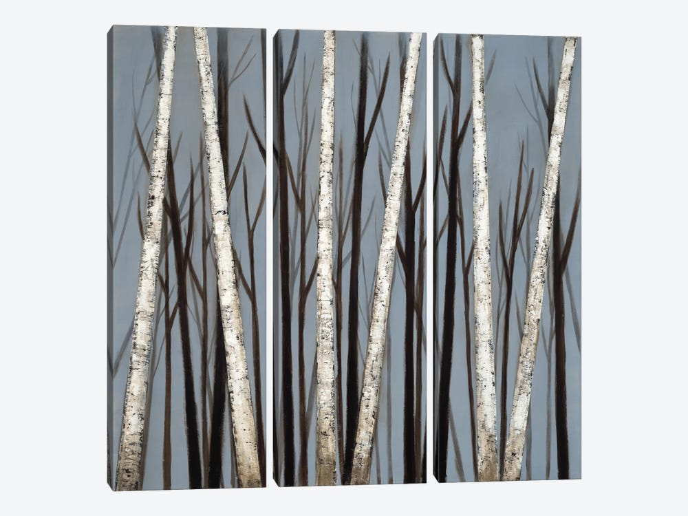 Birch Shadows by Eve 3-piece Canvas Wall Art