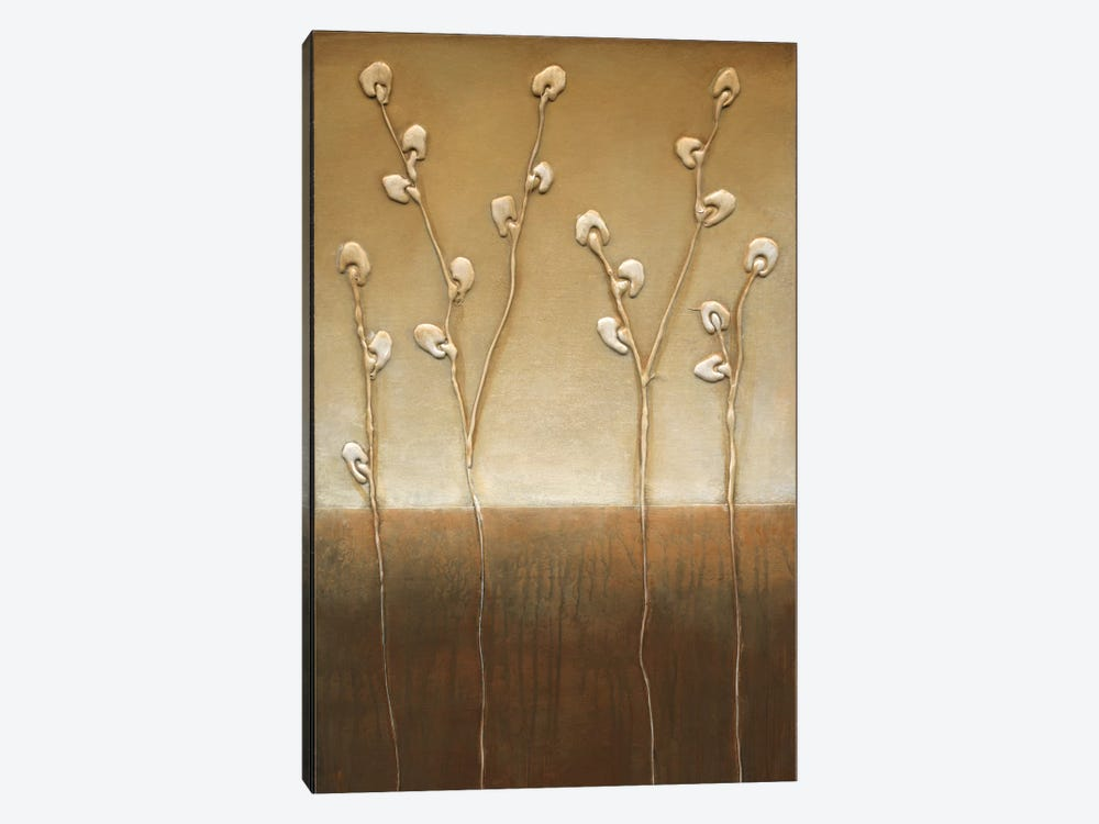Pussy Willows I by Eve 1-piece Canvas Wall Art