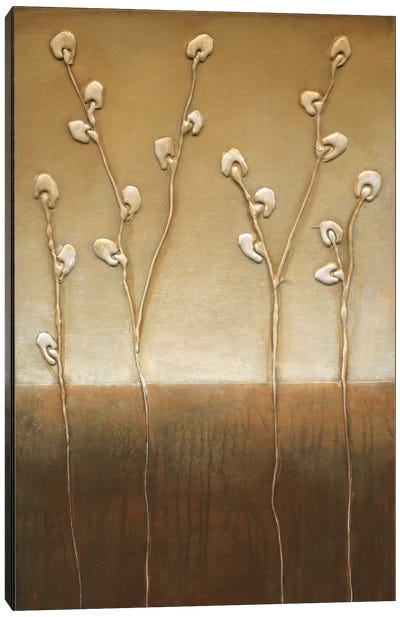 Pussy Willows I Canvas Art Print