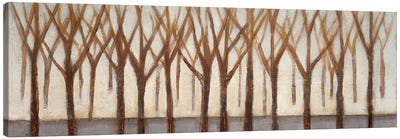 Treelines Canvas Art Print
