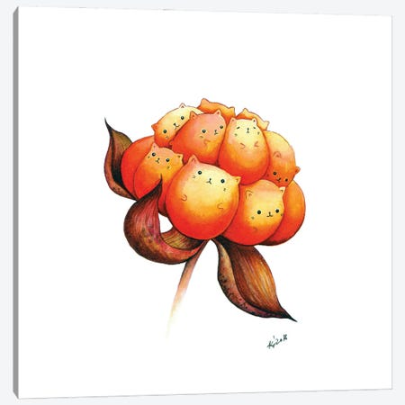 Cloudberry Canvas Print #EVK11} by Evgeniya Kartavaya Canvas Art