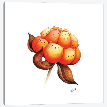 Cloudberry Canvas Print #EVK11} by Evgeniya Kartavaya Canvas Art