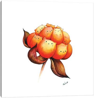 Cloudberry Canvas Art Print