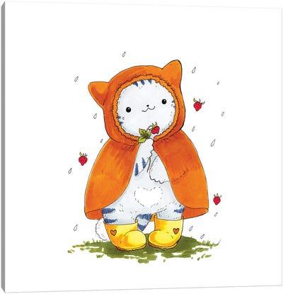 Mr. Pie: Strawberry Rain Canvas Art Print