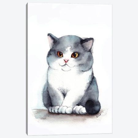 Chubby Cheeks Canvas Print #EVK9} by Evgeniya Kartavaya Canvas Wall Art