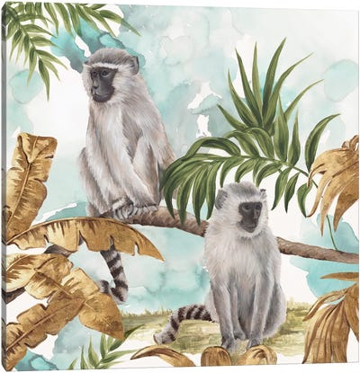 Golden Monkeys  Canvas Art Print