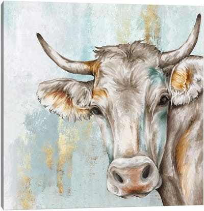 Headstrong Cow Canvas Art Print