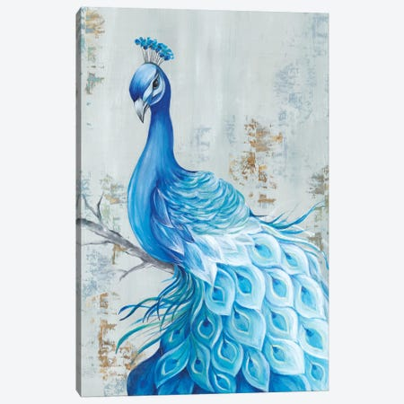 Peacock Paradise Canvas Print #EWA117} by Eva Watts Canvas Art