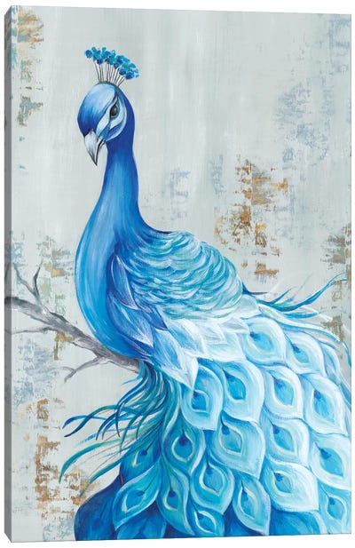 Peacock Paradise Canvas Art Print