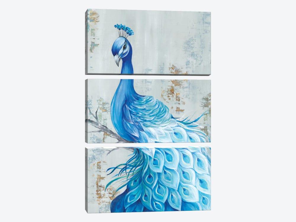 Peacock Paradise by Eva Watts 3-piece Canvas Art