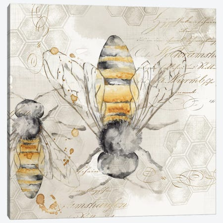 Queen Bee I  Canvas Print #EWA119} by Eva Watts Canvas Art Print