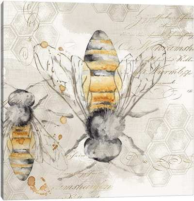 Queen Bee I  Canvas Art Print