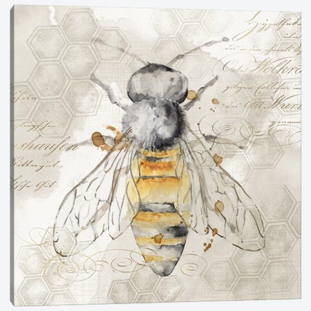 Queen Bee II  Canvas Print #EWA120} by Eva Watts Canvas Wall Art
