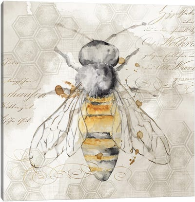 Queen Bee II  Canvas Art Print