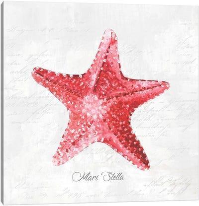 Red Starfish  Canvas Art Print