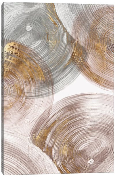 Spiral Rings II  Canvas Art Print