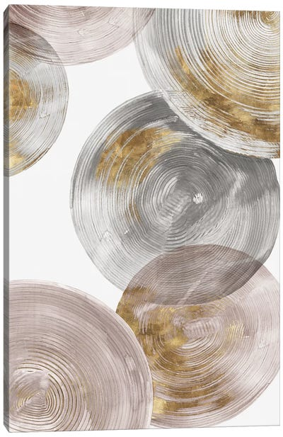 Spiral Rings III  Canvas Art Print