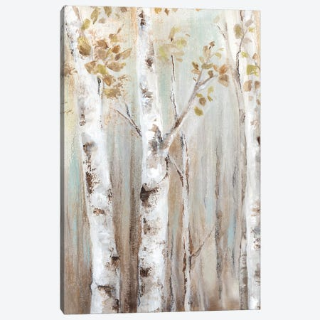 Sunset Birch Forest I  Canvas Print #EWA133} by Eva Watts Canvas Print