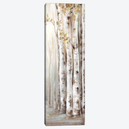Sunset Birch Forest II  Canvas Print #EWA134} by Eva Watts Canvas Artwork