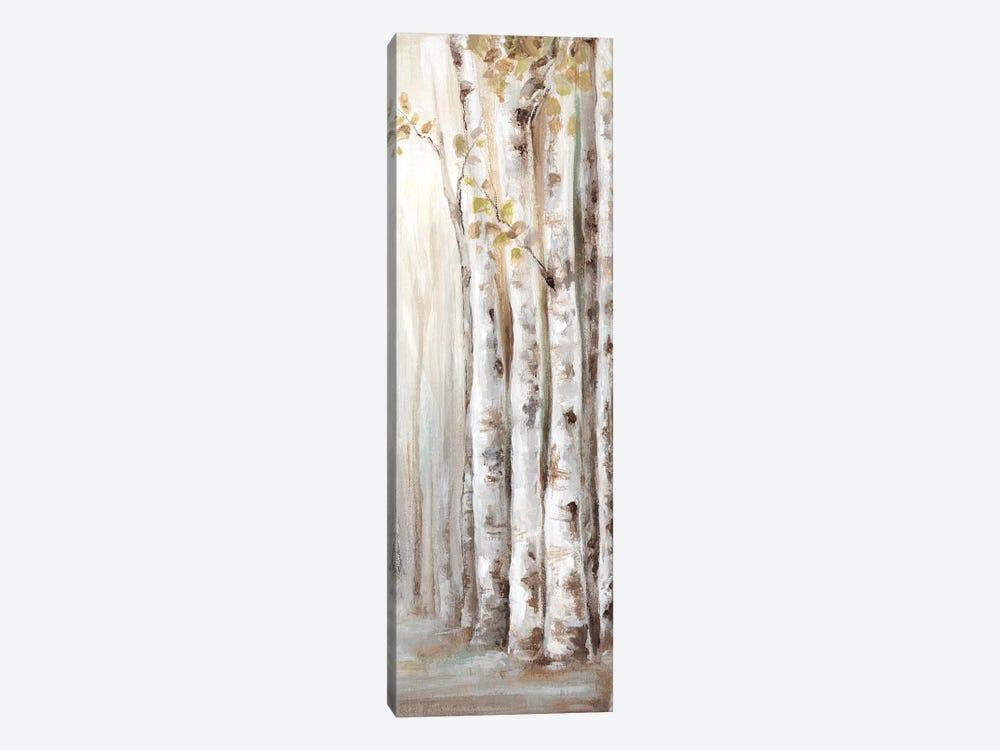 Sunset Birch Forest II  by Eva Watts 1-piece Canvas Print