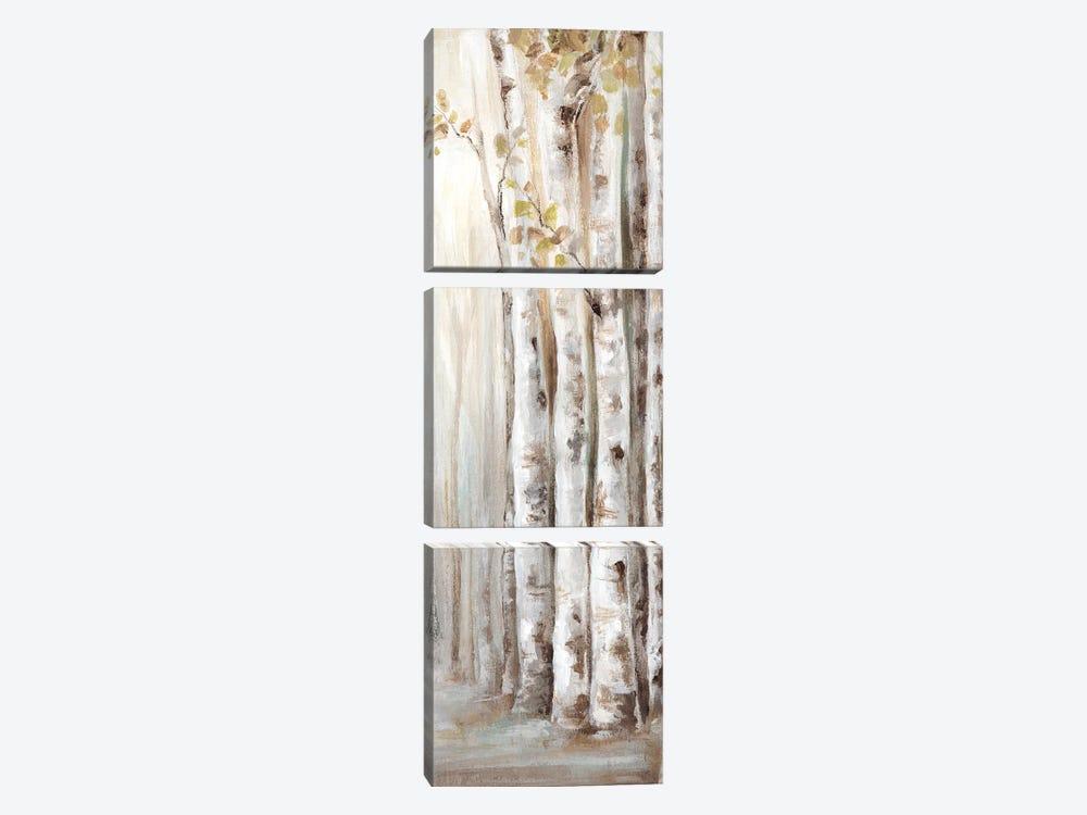 Sunset Birch Forest II  by Eva Watts 3-piece Canvas Art Print