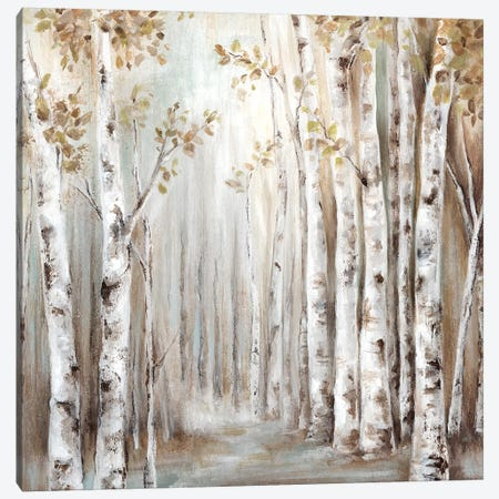 Sunset Birch Forest III  Canvas Print #EWA135} by Eva Watts Canvas Art