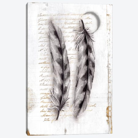 Vintage Feathers I  Canvas Print #EWA142} by Eva Watts Canvas Art